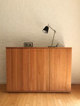 Ref-1005576-s102-kirschbaum