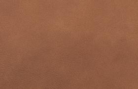 Leder-lome-cognac