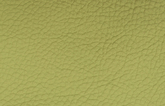 Leder-montana-lime