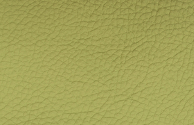 leder montana lime
