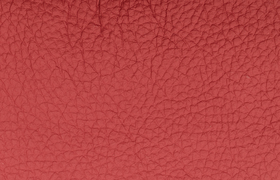 leder montana red