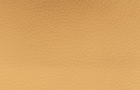 leder montana sand