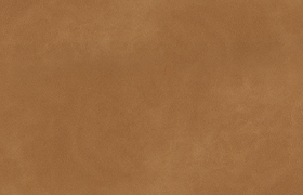 Leder-gazelle-chamois