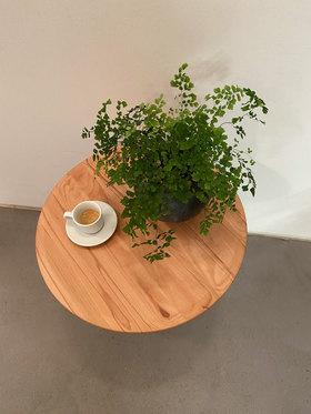 ref ct102 pflanze 1