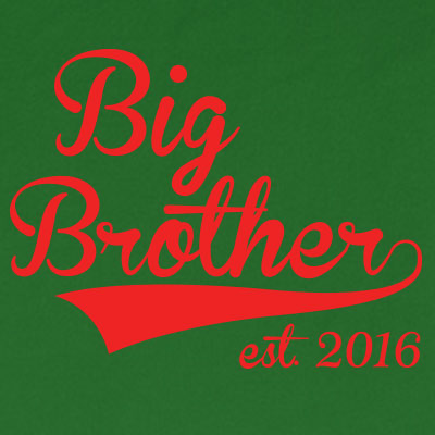 Big Brother est. 2016
