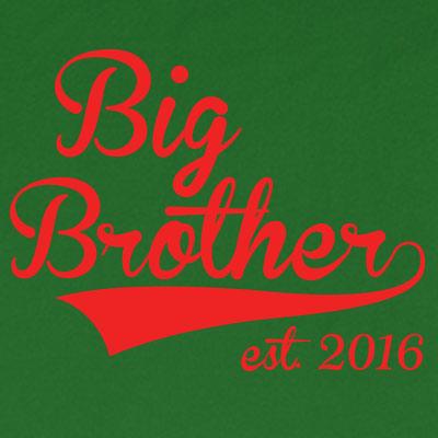 Big Brother est. 2016