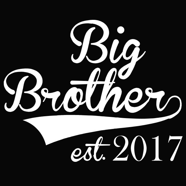Big Brother est. 2017