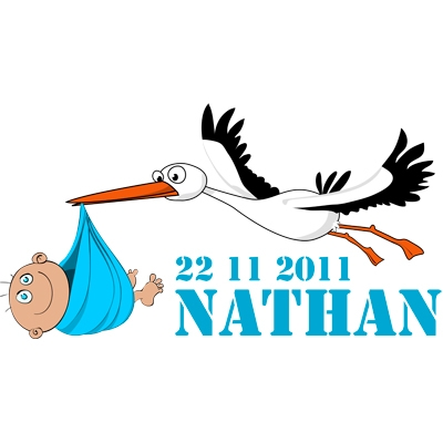 Birth sticker 'Full color Stork Boy' M20