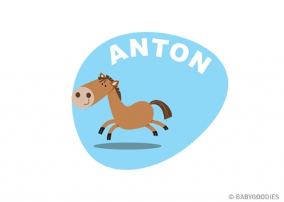 Wall sticker with name: Horse