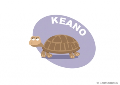 Wall sticker with name: Turtle