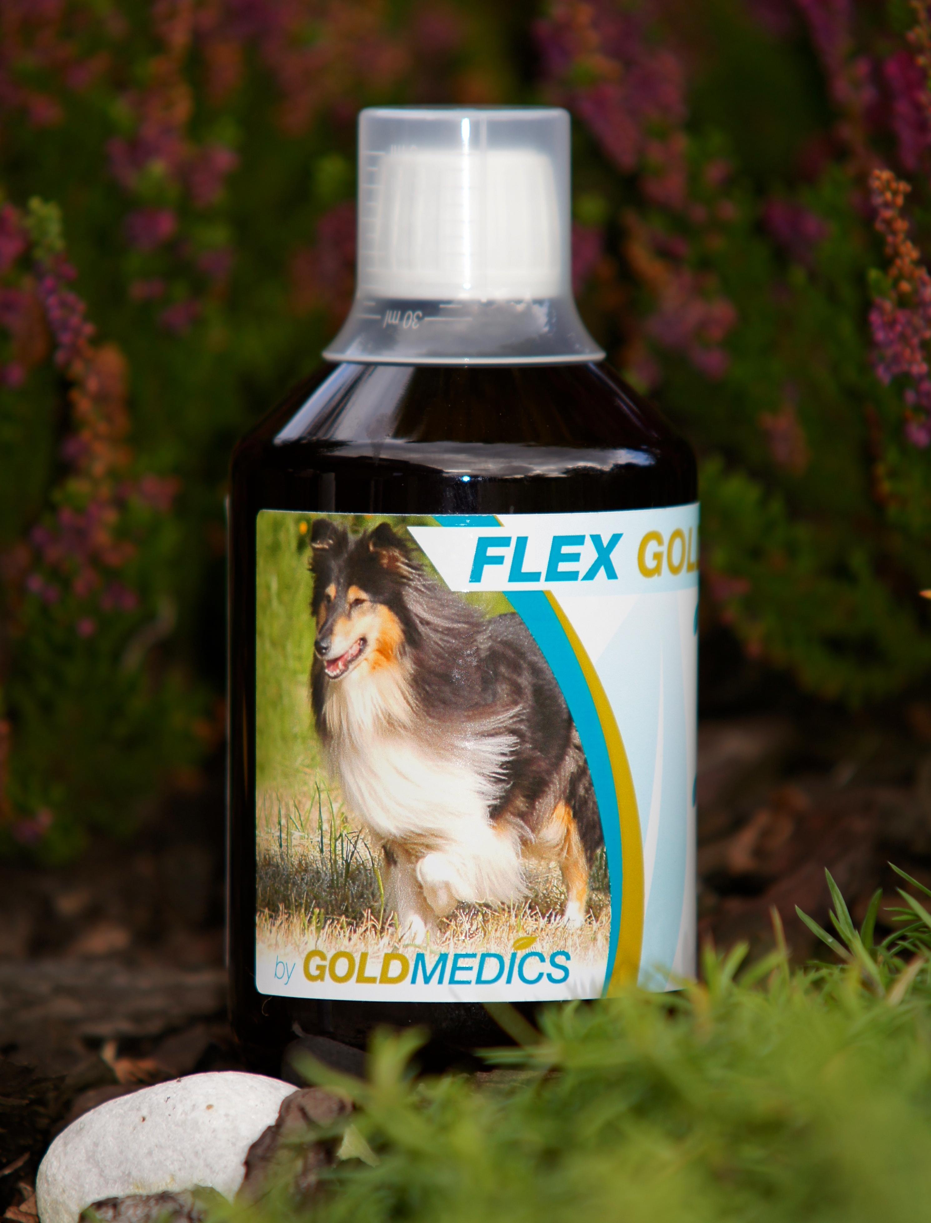 Flex Dog
