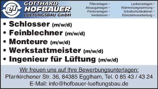 Feinblechner/in