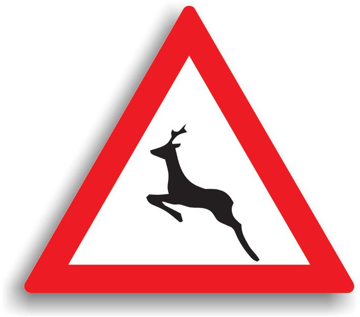 Se amplaseaza la 100-200 m de sectorul de drum periculos, unde exista riscul ca animalele sa traverseze sau sa circule pe drumul public. La intalnirea acestui indicator, conducatorul auto este obligat sa reduca viteza si sa circule cu atentie sporita. La trecerea pe langa animale care sunt conduse pe partea carosabila sau pe acostament, conducatorul auto este obligat sa reduca viteza la max. 30 km/h in localitate si max. 50 km/h in afara localitatii.