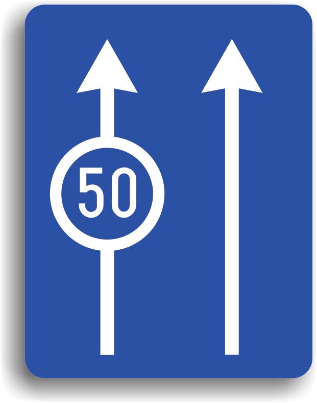 Poate fi intalnit pe drumurile publice avand rolul de a-i obliga pe conducatorii de vehicule sa se incadreze pe banda corespunzatoare vitezei cu care se deplaseaza.