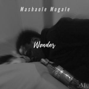 Wonder__