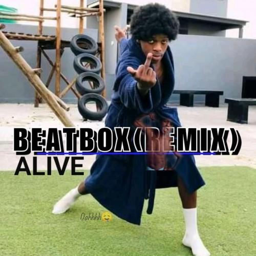 BeatBox(Remix|BIGXHOSA)