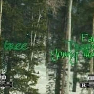 Yung Waine TG ft Fabi _ Day Before Trape Tree