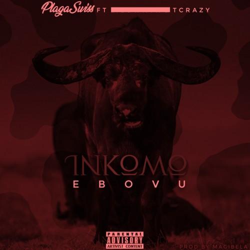 Plagaswiss(INKOMO Ebovu ft T Crazy_SA Prod by Magibela)