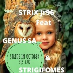 STRIDE IN OCTOBER 3(S.I.O)