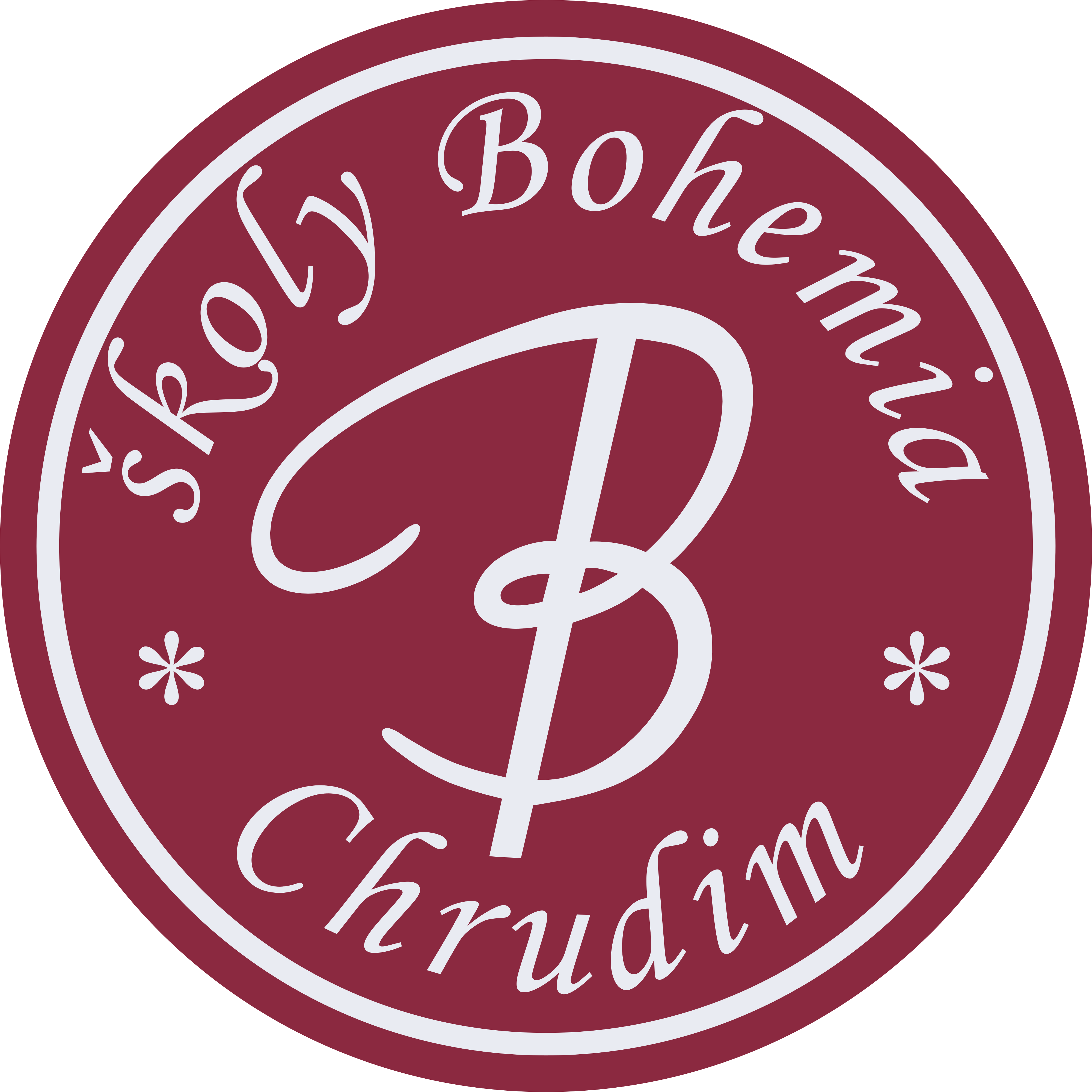 Bohemia – Hotelová škola a Střední pedagogická škola a Základní škola s.r.o. logo