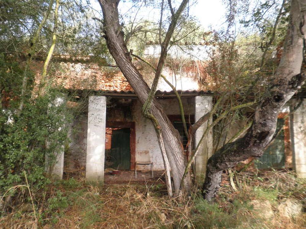 sencelles majorque maison de campagne photo 3050485