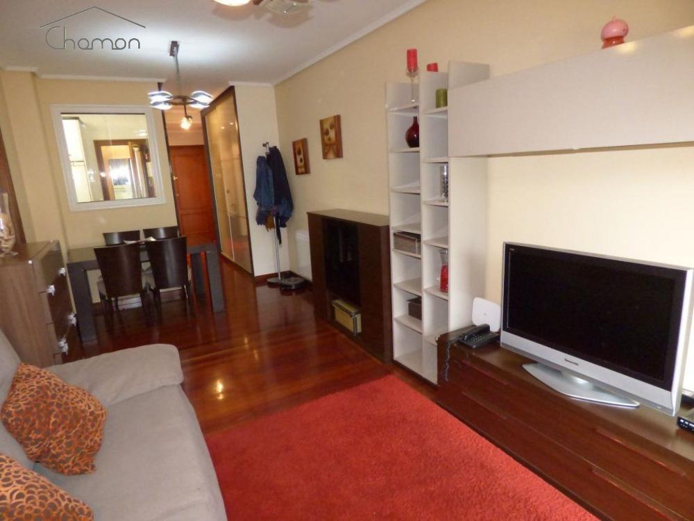 basurto-zorroza vizcaya  lägenhet foto 3064390