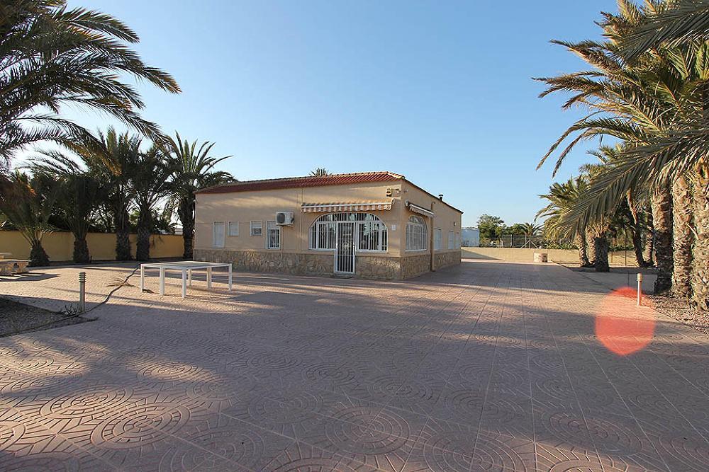 Corona Alicante