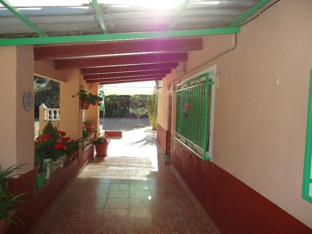 tibi alicante Haus foto 3506900