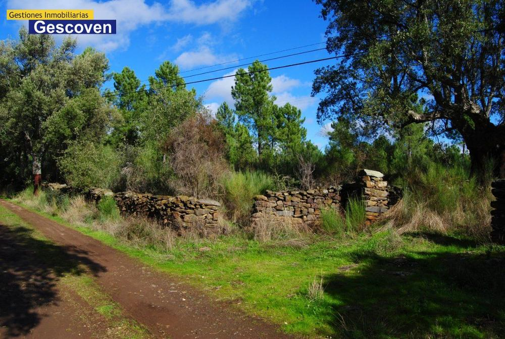 valencia de alcantara cáceres  house foto 3502317
