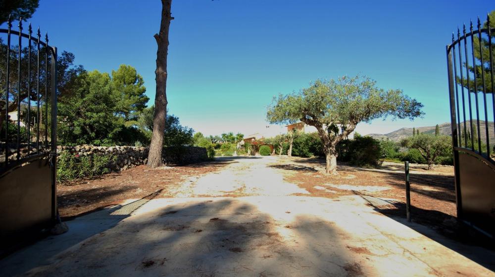 lliber alicante Haus foto 3485003