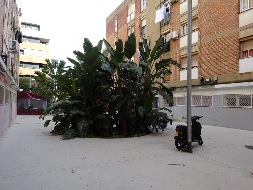 sant andreu-sant andreu barcelona piso foto 3509290