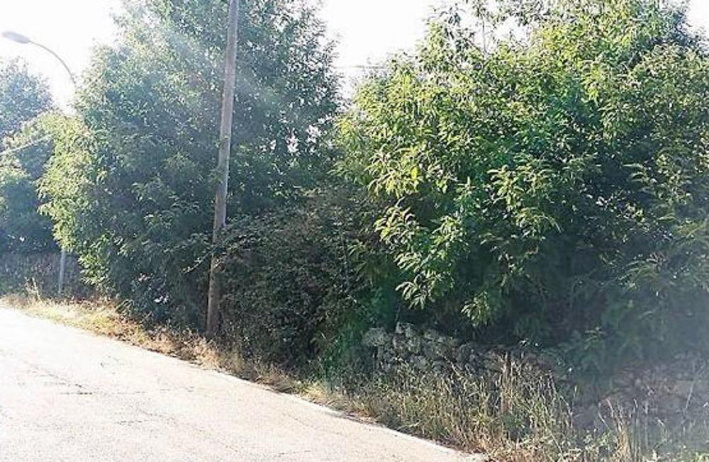 horcajo de montemayor salamanca grondstuk foto 3524336