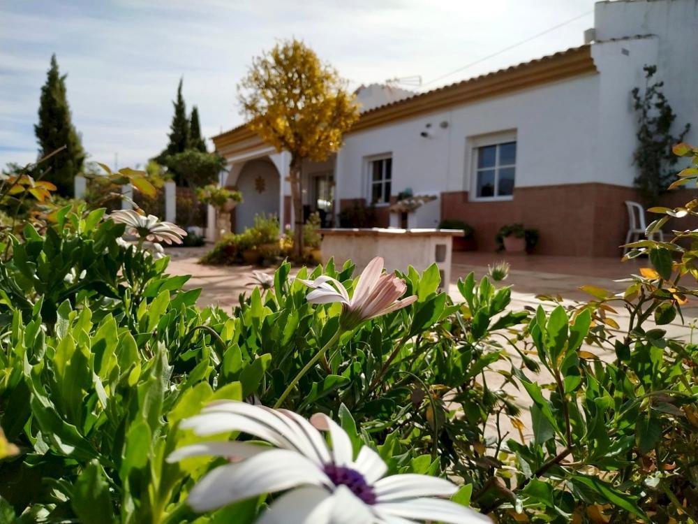 viñuela málaga hus på landet foto 3853954
