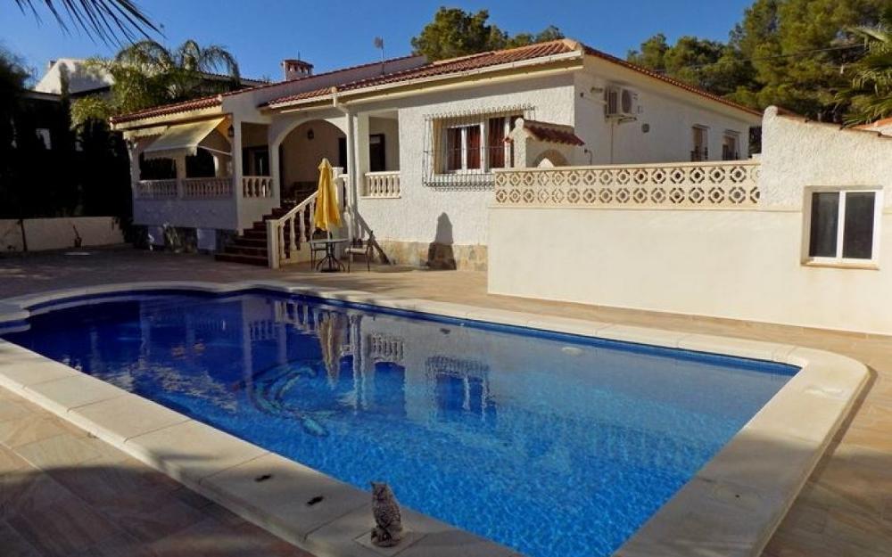 mil palmeras alicante villa foto 3662359