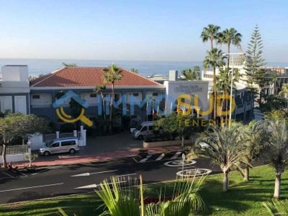 oasis del sur tenerife apartment foto 3719153