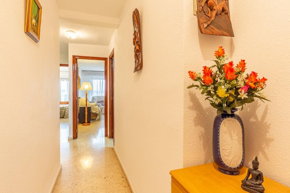 alfaz del pi alicante lägenhet foto 3724726