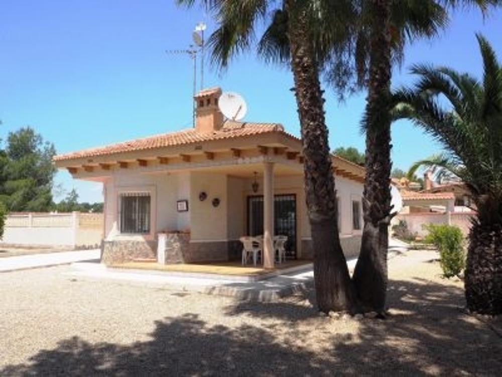 mil palmeras alicante villa foto 3825133