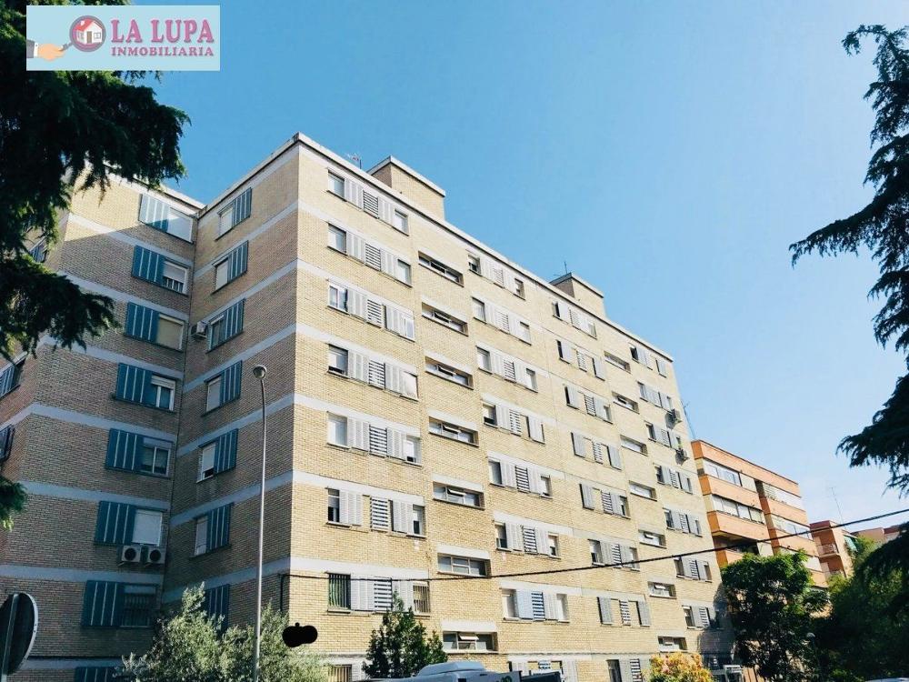 latina-campamento madrid piso foto 3809715
