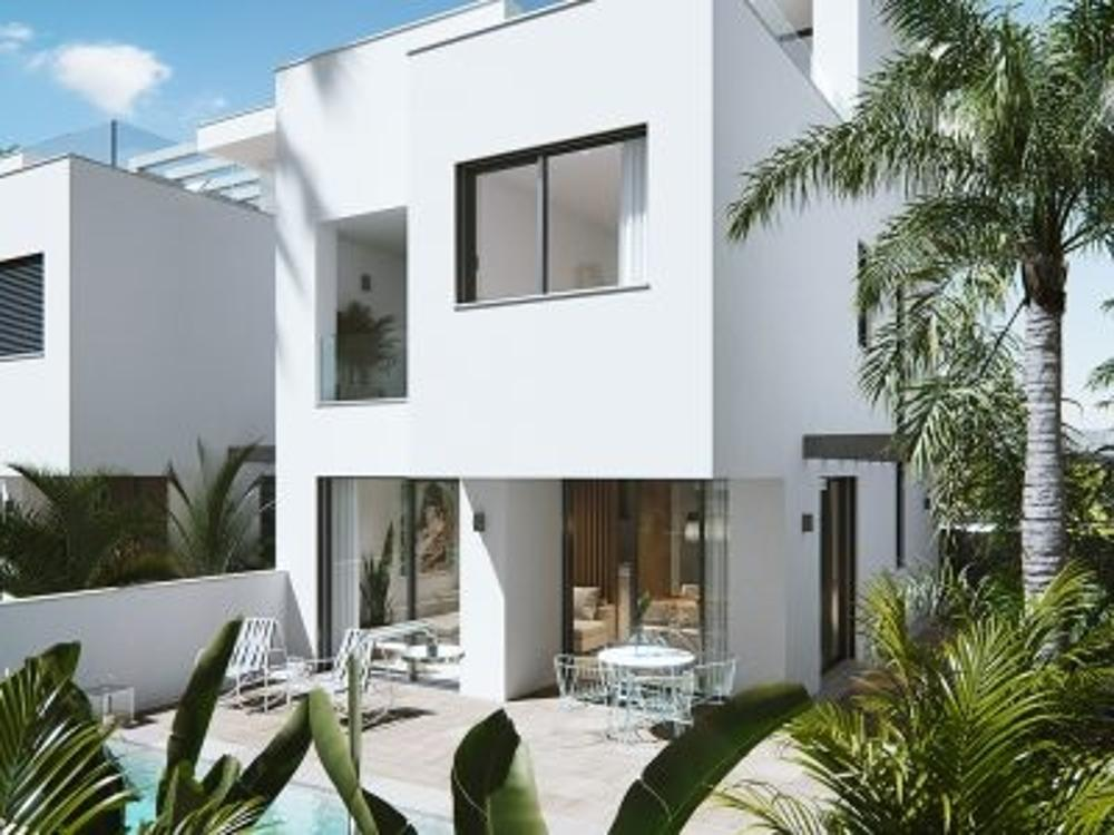 mil palmeras alicante villa foto 3817713