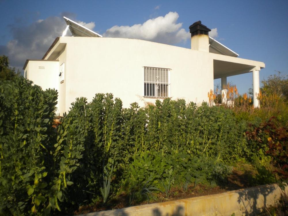 la pobla de vallbona valencia hus foto 3825889