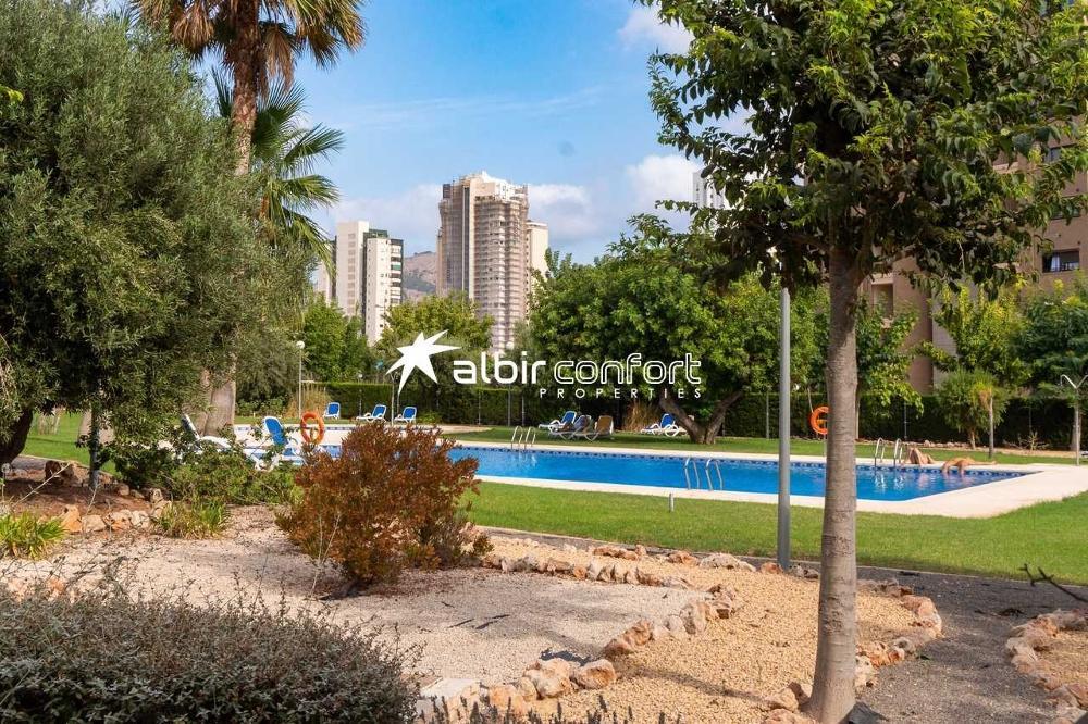 benidorm alicante lägenhet foto 3847747