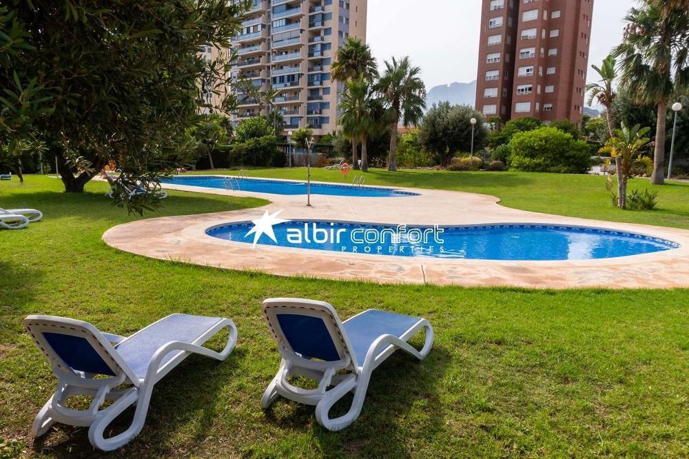 benidorm alicante lägenhet foto 3847745