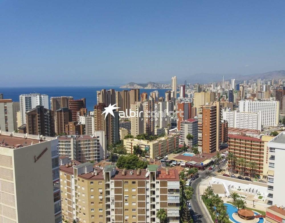 benidorm alicante lägenhet foto 3847692