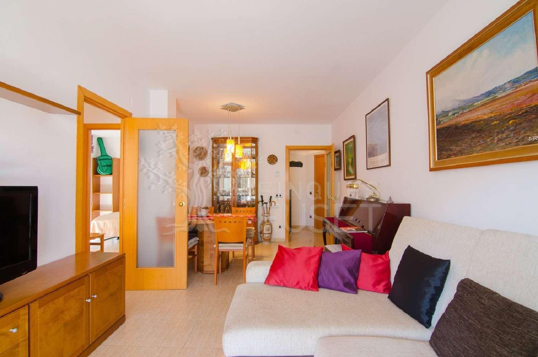 malgrat de mar barcelona lägenhet foto 4178303