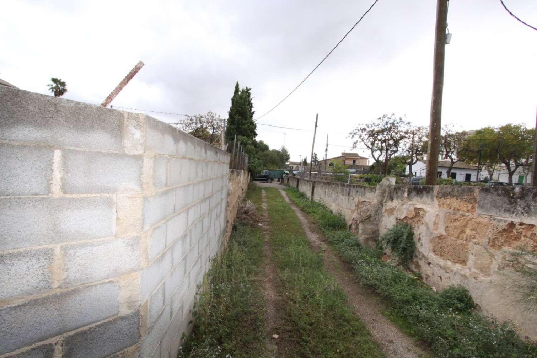santa catalina-es jonquet majorca plot foto 4208798