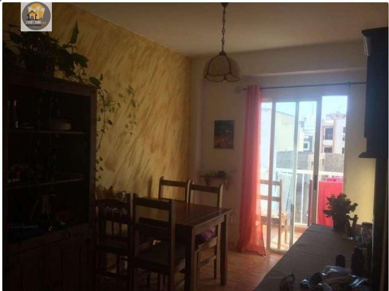 el medano tenerife lägenhet foto 4173705