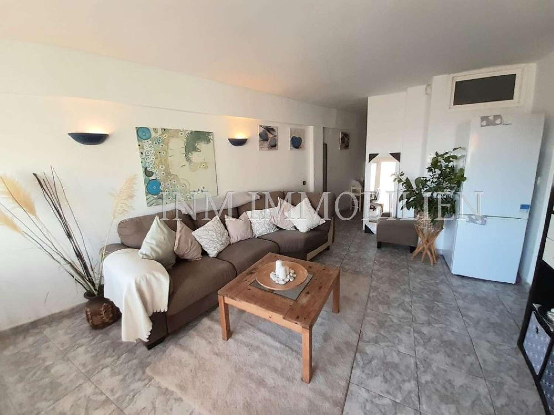 magaluf mallorca lägenhet foto 4201030