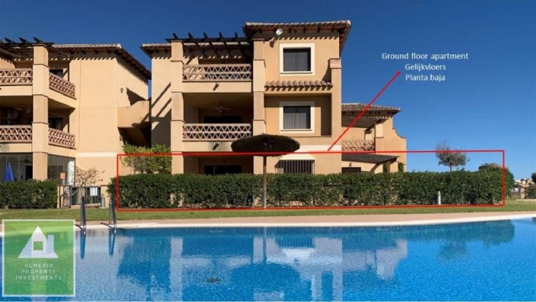 köpa lägenhet paiporta valencia 1