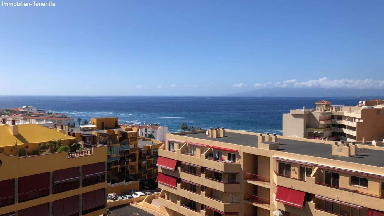 puerto de santiago tenerife kommersiell foto 4225431