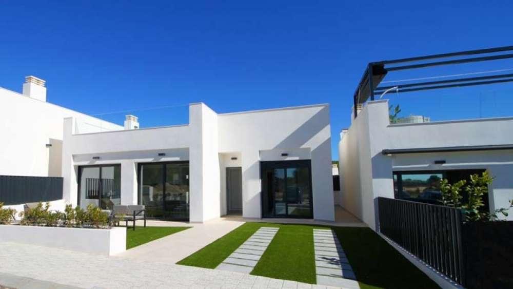 mil palmeras alicante villa foto 3874432